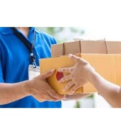 Hand Delivery Service