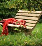 FSC Garden Benches